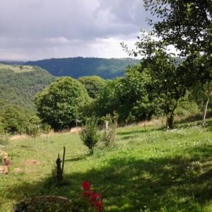 Parenthese Bien-être : Vue sur le jardin et la vallée