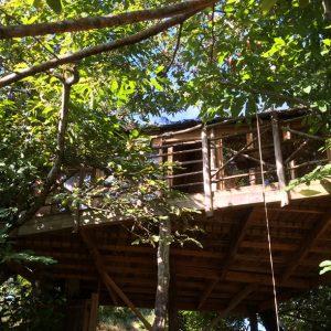 cabane-perchee-exterieur